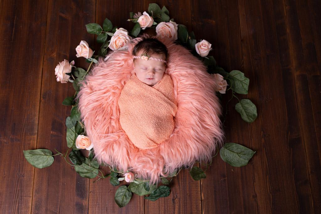 baby auf apricotfarbenem Fell mit rosen umrandet