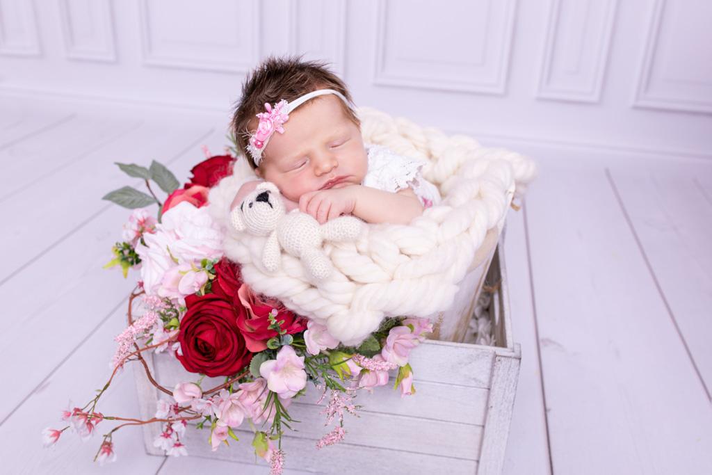 Neugeborene mit einem Teddy in der Hand umgeben von Rosen